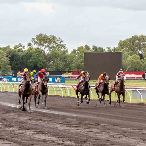 Feature Race: TAB ROANT Race Day