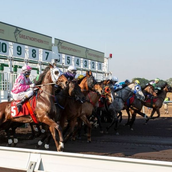 Friday Valentines Day Races