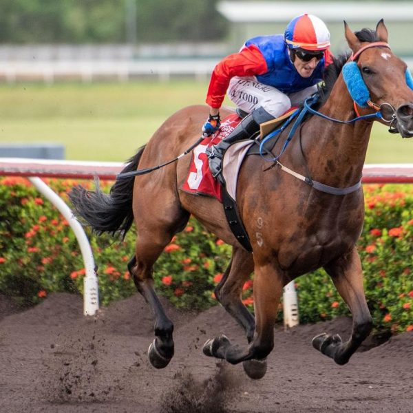 Darwin trainer Gary Clarke records a stunning five wins from five starts