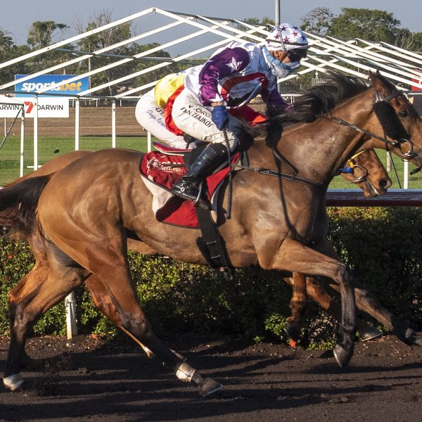 Gillett: Locally-bought That's Justified a 'phenomenal' horse after winning Metric Mile at Darwin Turf Club